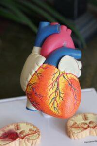 Cholestrol - Heart