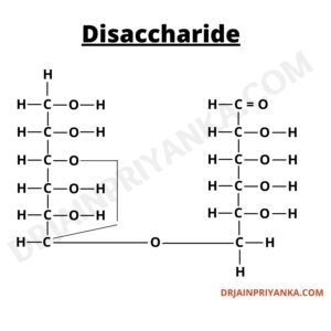 Disaccharide Structure - Classes of Carbohydrates, Disaccharide, Types of Carbohydrates , Example of Disaccharide, Structure of Disaccharide